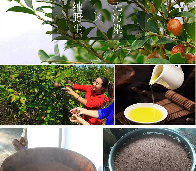 阳康茶油详情图_05.jpg