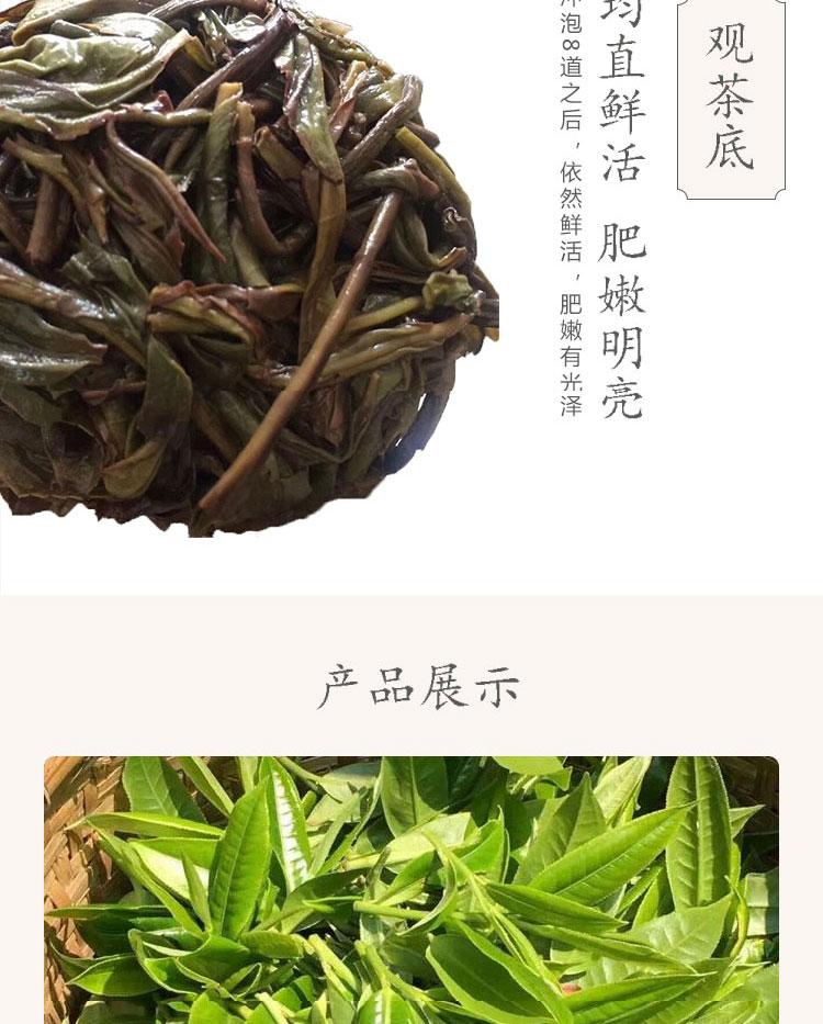 单枞茶_06.jpg